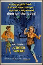 Un tigre se escapa
