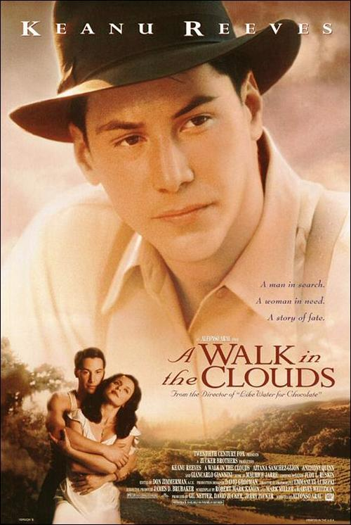 póster de la película Un paseo por las nubes