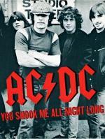 AC/DC: You Shook Me All Night Long (Vídeo musical)