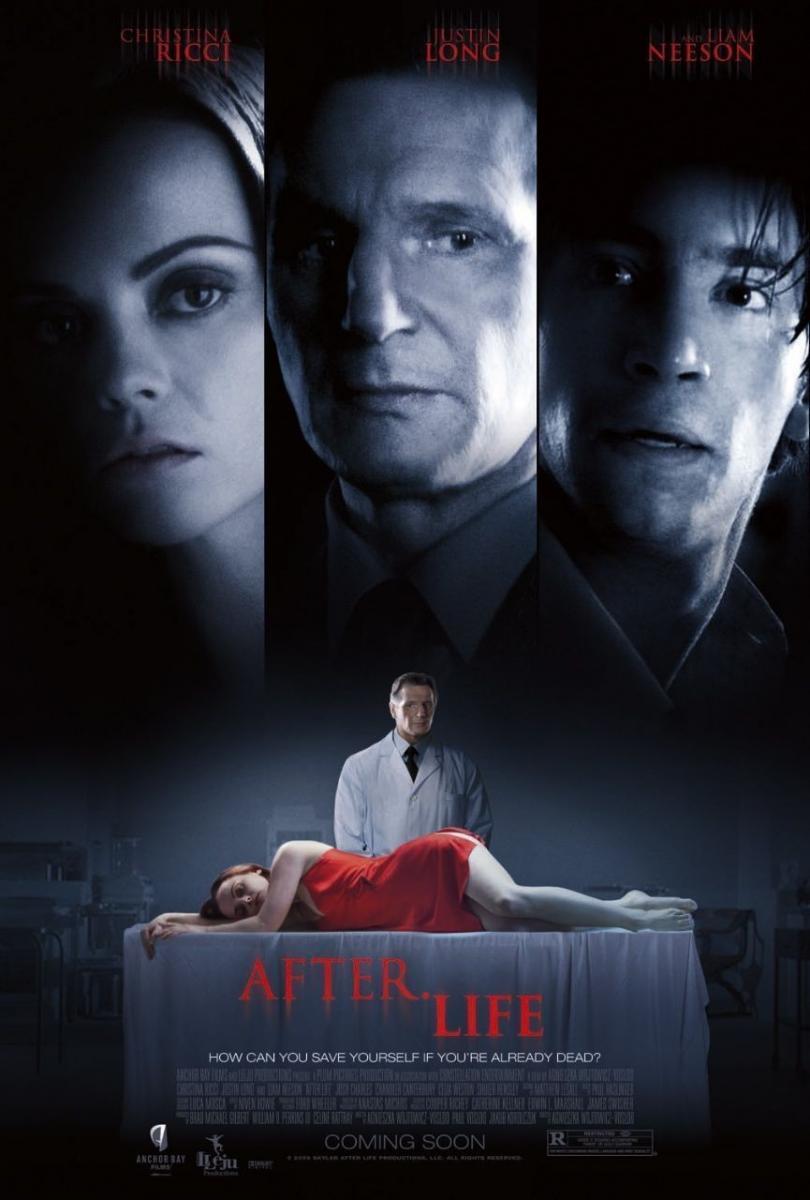 Después de la vida (2009) HD Latino Gratis ()
