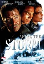 After the Storm (TV)