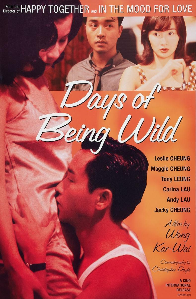 Risultati immagini per DAYS OF BEING WILD ( 1990 ) POSTER