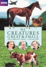 All Creatures Great and Small (Serie de TV)