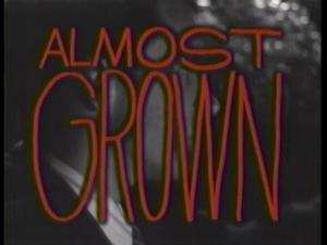 Almost Grown (TV Series)