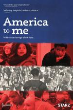 America to Me (TV Series)