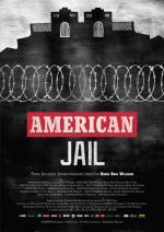 American Jail (TV)