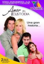 Amor en custodia (Serie de TV)