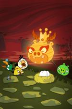 Angry Birds: Year of the Dragon (C)