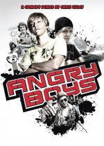 Angry Boys (TV Series)