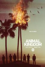 Animal Kingdom (Serie de TV)