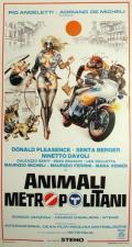 Animali metropolitani
