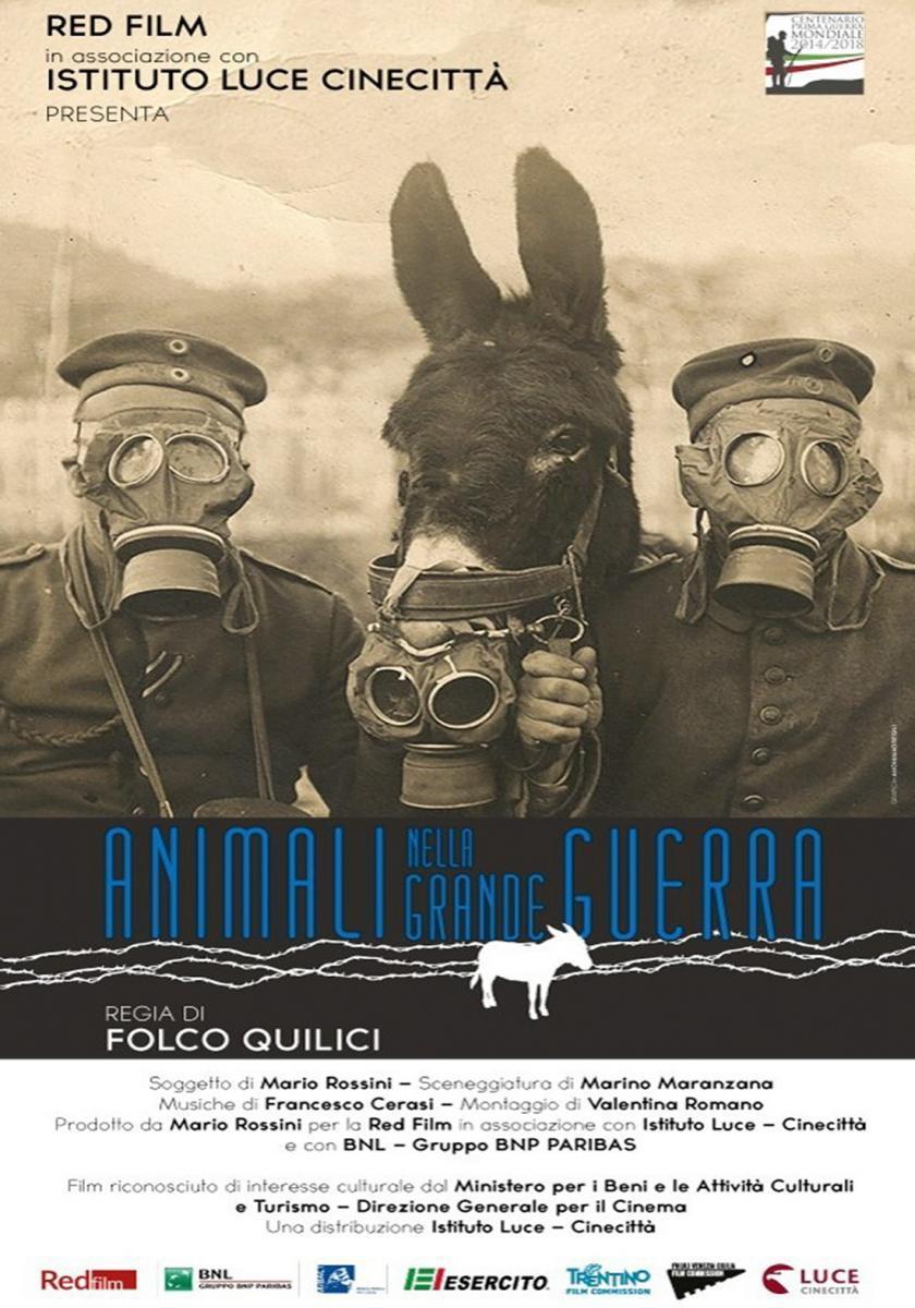 https://pics.filmaffinity.com/animali_nella_grande_guerra_animals_in_the_great_war-701075740-large.jpg