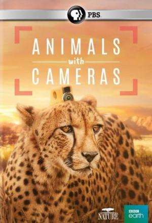 Animals with Cameras (TV Miniseries)
