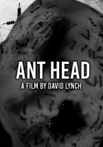 Ant Head (C)