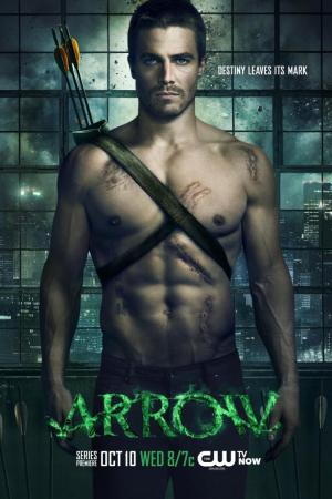 Arrow Temporada 1 HDRip   Español Latino