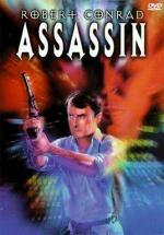 Assassin (TV)