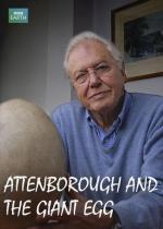 Attenborough y el huevo gigante (TV)