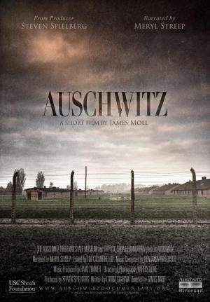 Auschwitz (C)