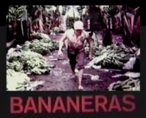 Bananeras (C)