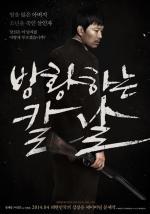 Bang-hwang-ha-neun kal-nal (Broken)