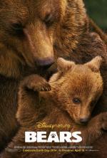 Bears (Osos)