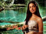 Bicho do Mato (Serie de TV)