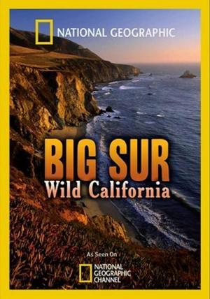 Big Sur-Wild California