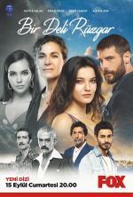 Bir Deli Rüzgar (Serie de TV)