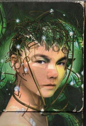 Björk: Bachelorette (S)