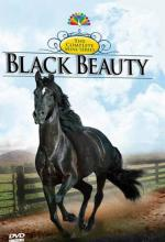 Black Beauty (TV Miniseries)