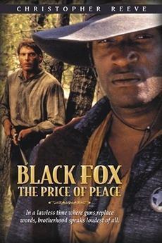 Zorro negro 2: El precio de la paz (TV)