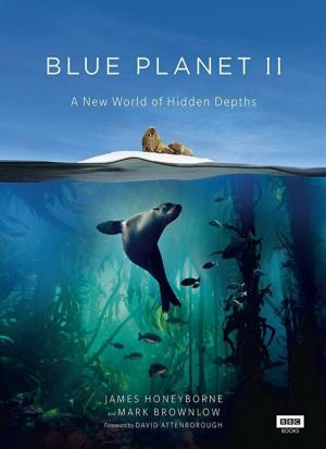 Blue Planet II (TV Miniseries)