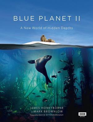 Planeta azul II (Miniserie de TV)