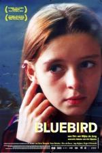 Bluebird (TV)