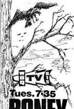 Boney (Serie de TV)