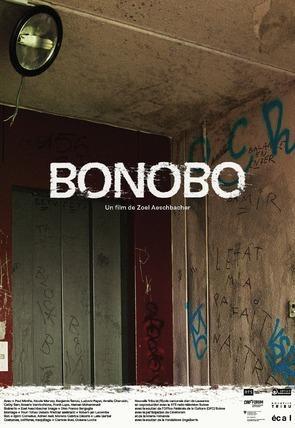 Bonobo (C)