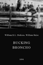Bucking Broncho (C)