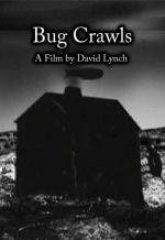 Bug Crawls (C)
