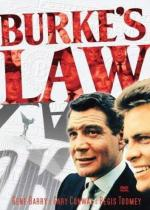 El agente Burke (Serie de TV)