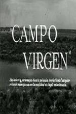 Campo virgen