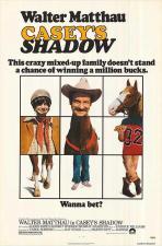 La sombra de un campeón