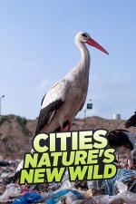 Cities: Nature's New Wild (Miniserie de TV)