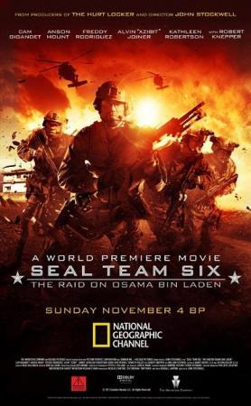 Cazando a Bin Laden (TV)