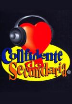 Confidente de secundaria (Serie de TV)
