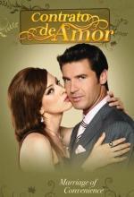Contrato de amor (Serie de TV)