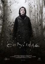 Corvidae (C)