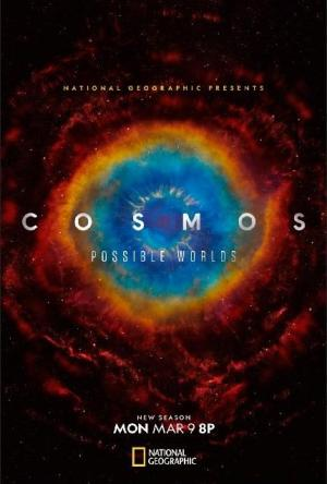 Cosmos: Possible Worlds (TV Series)