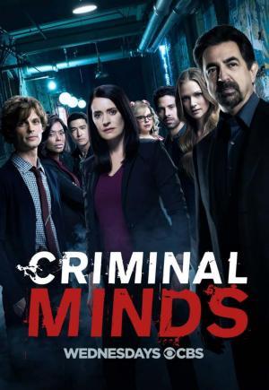 Mentes criminales (Serie de TV)