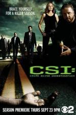 C.S.I. (Serie de TV)
