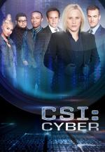 CSI: Cyber (TV Series)